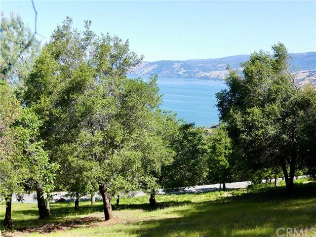 3167 Skyline Drive, Kelseyville, CA 95451 (#LC21097248) :: RE/MAX Empire Properties