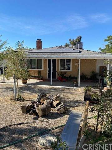 3203 E Avenue R14, Palmdale, CA 93550 (#SR21098166) :: The Costantino Group | Cal American Homes and Realty