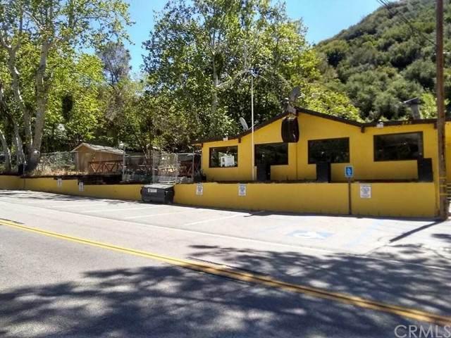 585 Lytle Creek Road, Lytle Creek, CA 92358 (#IV21098354) :: A|G Amaya Group Real Estate