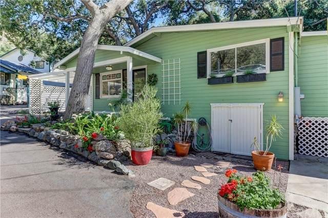 29232 Hazel Bell Drive, Silverado Canyon, CA 92676 (#PW21094034) :: Wendy Rich-Soto and Associates