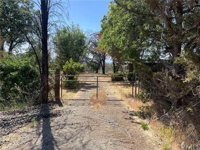 55 Seaman Lane, Paradise, CA 95969 (#SN21098416) :: Legacy 15 Real Estate Brokers