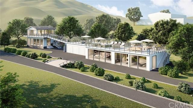 28532 Williams Canyon Road, Silverado Canyon, CA 92676 (#OC21093740) :: The Laffins Real Estate Team