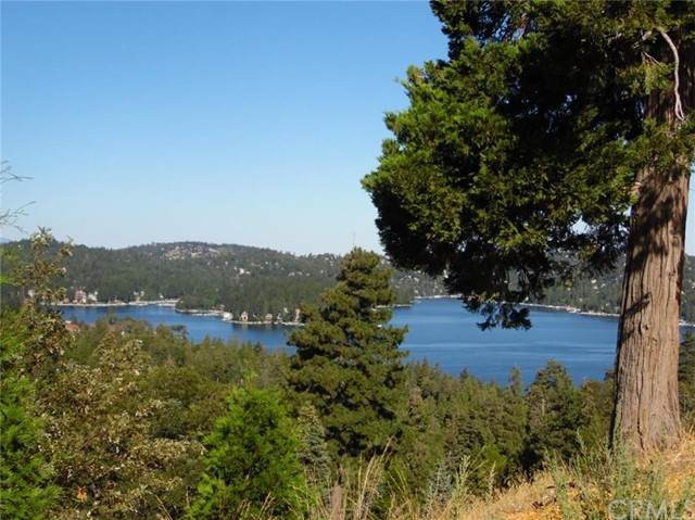 299 Ponderosa Peak Road, Lake Arrowhead, CA 92352 (#EV21098920) :: Compass