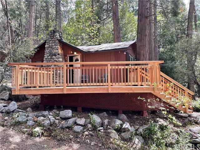 39861 Fern Lane, Forest Falls, CA 92339 (#EV21092657) :: Mainstreet Realtors®