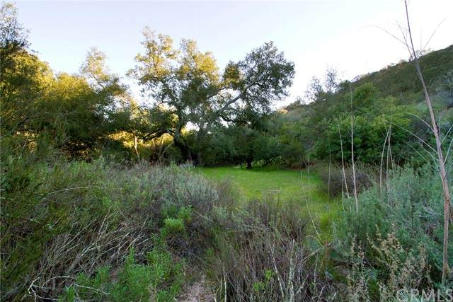 0 Live Oak Canyon Road, Trabuco Canyon, CA 92679 (#LG21099253) :: RE/MAX Masters