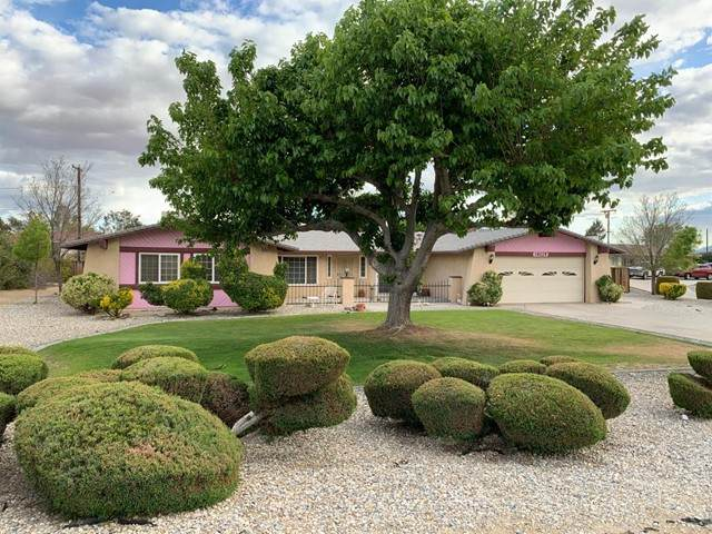19225 Tomahawk Road, Apple Valley, CA 92307 (#535027) :: Realty ONE Group Empire