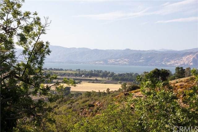 5380 Konocti Road, Kelseyville, CA 95451 (#LC21099513) :: RE/MAX Masters