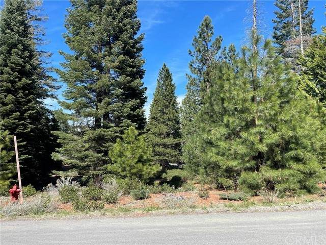 252 Snowy Peak Way, Lake Almanor, CA 96137 (#SN21098446) :: The Marelly Group | Sentry Residential
