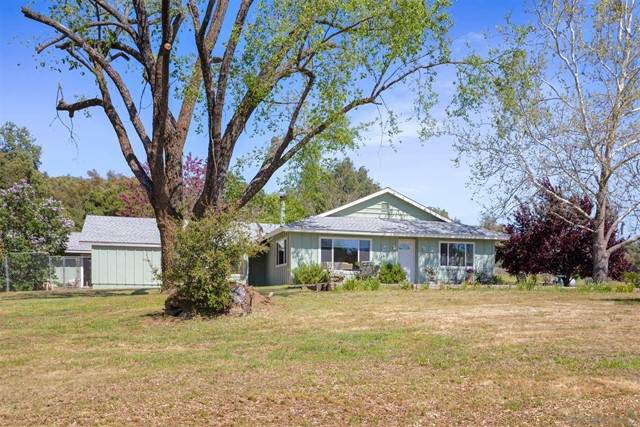 2975 Williams Ranch Rd, Santa Ysabel, CA 92070 (#210012507) :: Mainstreet Realtors®