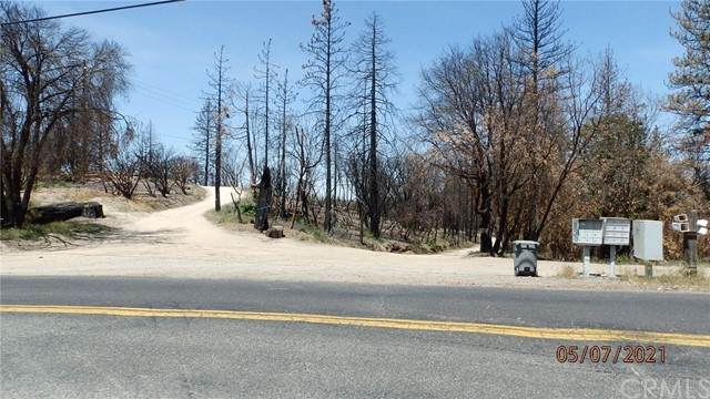 55 Cedar Tree Lane - Photo 1