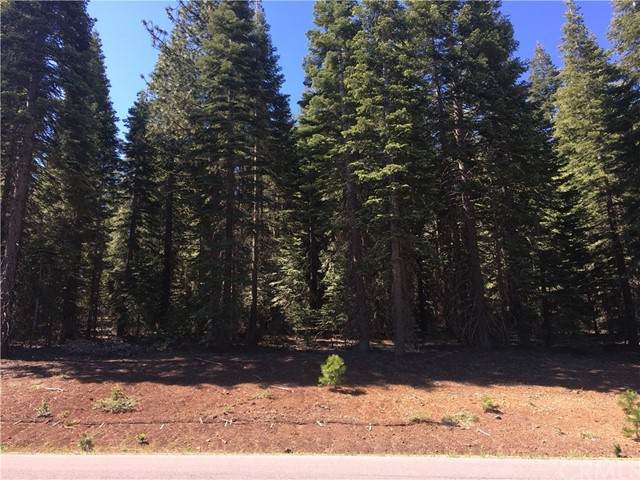 217 Snowy Peak Way, Lake Almanor, CA 96137 (#SN21100296) :: The Marelly Group | Sentry Residential