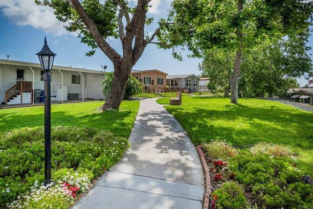 3340 Del Sol Blvd #124, San Diego, CA 92154 (#PTP2103190) :: Rogers Realty Group/Berkshire Hathaway HomeServices California Properties