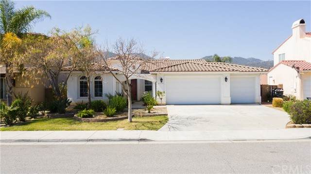 21715 Pink Ginger Court, Wildomar, CA 92595 (#MB21100707) :: Team Forss Realty Group