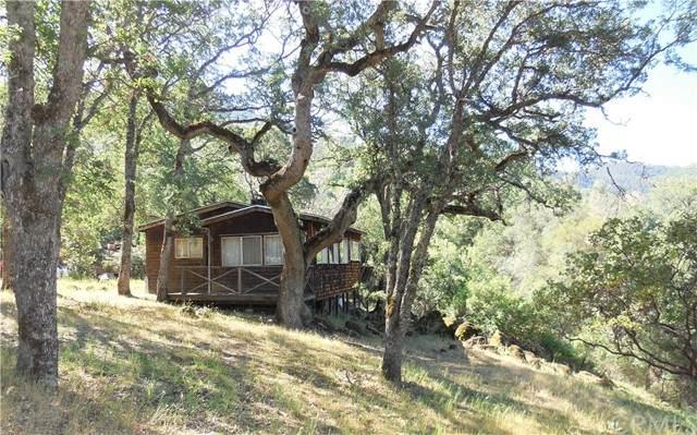 6737 Buena Vista Avenue, Kelseyville, CA 95451 (#LC21088939) :: Better Living SoCal