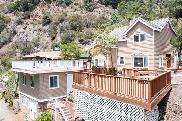 30051 Silverado Canyon Road, Silverado Canyon, CA 92676 (#PW21100430) :: Zutila, Inc.