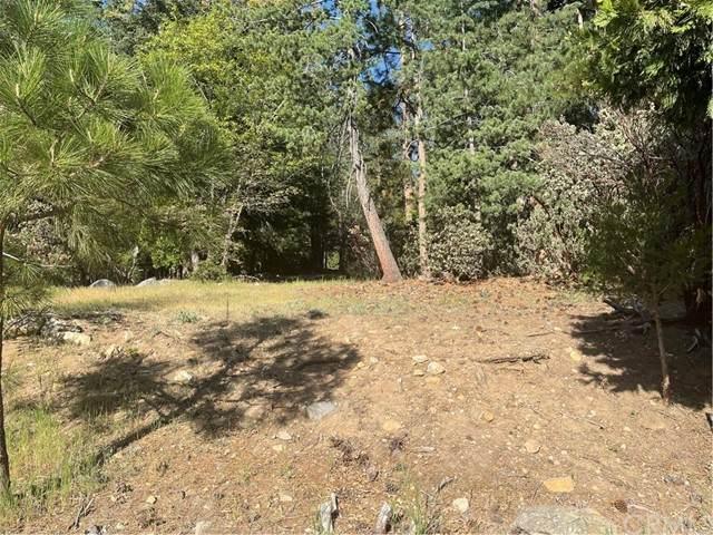 6362 Sugar Pines Circle, Angelus Oaks, CA 92305 (#EV21099738) :: Mainstreet Realtors®