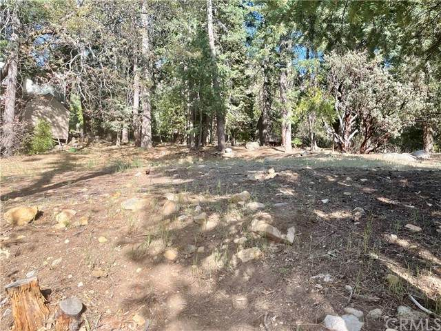6356 Sugar Pines Circle, Angelus Oaks, CA 92305 (#EV21099704) :: Mainstreet Realtors®
