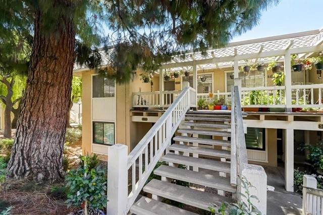 5371 Cribari, San Jose, CA 95135 (#ML81843510) :: Swack Real Estate Group | Keller Williams Realty Central Coast
