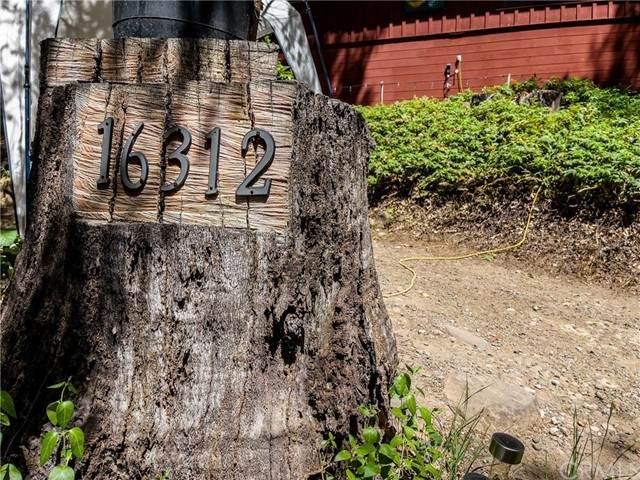 16312 Golf Road, Cobb, CA 95426 (#LC21100560) :: Better Living SoCal