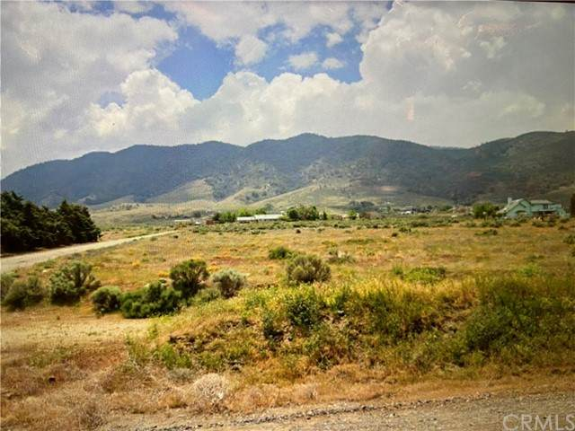 0 Chinook Avenue, Tehachapi, CA 93561 (#TR21102095) :: Better Living SoCal