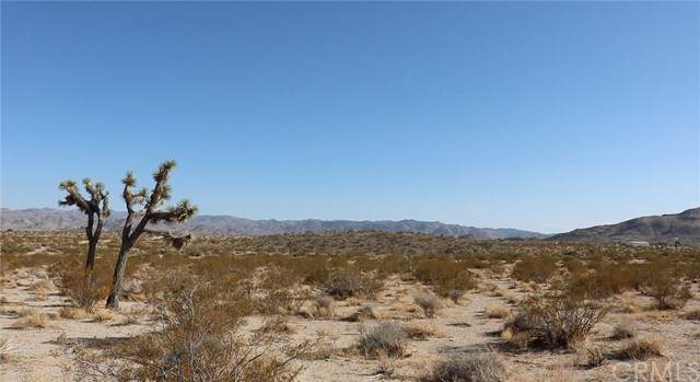 0 Sunny Sands Drive, Joshua Tree, CA 92252 (#IV21102120) :: Powerhouse Real Estate