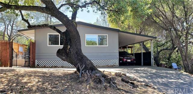456 Silver Leaf Drive, Oroville, CA 95966 (#OR21102798) :: The Alvarado Brothers