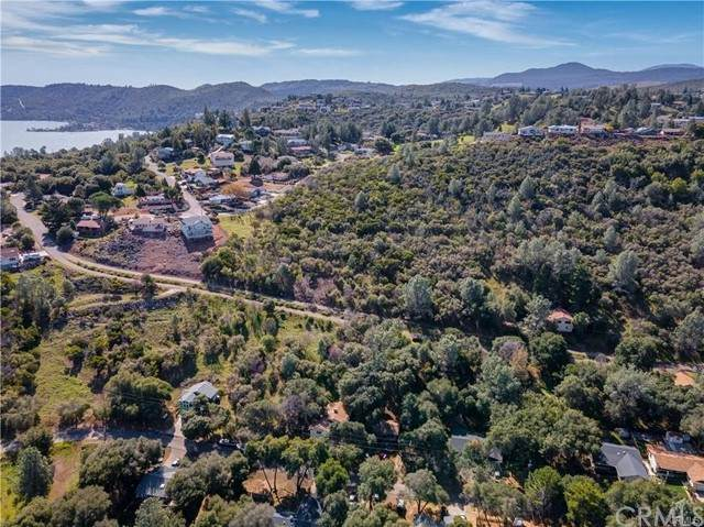 10569 Boren Bega Drive, Kelseyville, CA 95451 (#LC21103199) :: Mark Nazzal Real Estate Group