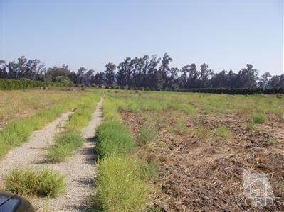 Posita Road, Somis, CA 93066 (#221002583) :: Mainstreet Realtors®