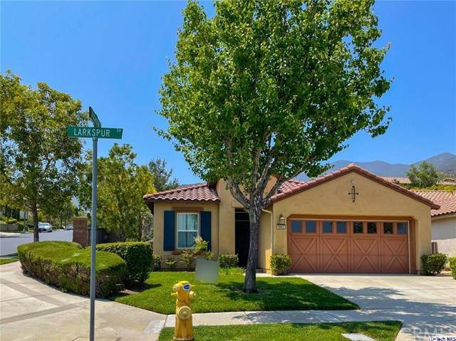 8883 Larkspur Drive, Corona, CA 92883 (#320005950) :: The Results Group