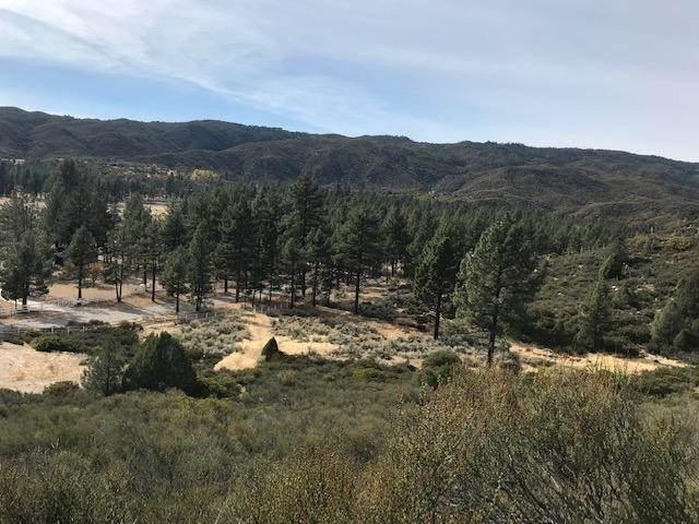 1 Butterfly Peak, Mountain Center, CA 92561 (#219062039DA) :: Necol Realty Group