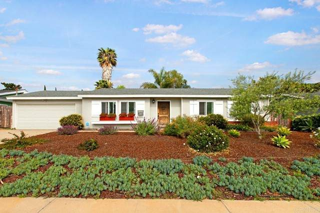1815 Freda Lane, Cardiff By The Sea, CA 92007 (#NDP2105359) :: Jett Real Estate Group