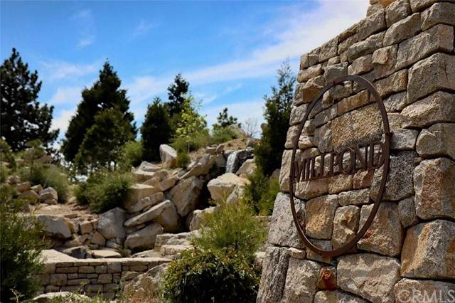 136 Mill Pond Road, Lake Arrowhead, CA 92352 (#EV21096380) :: Zember Realty Group