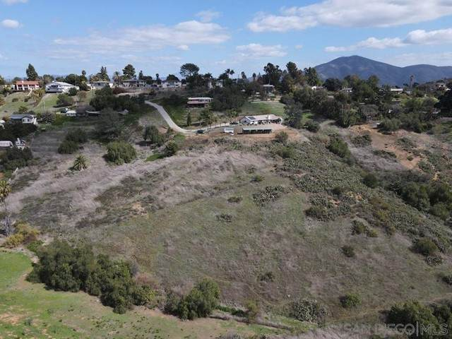 9407 Miner Ct, Spring Valley, CA 91977 (#210013073) :: Compass