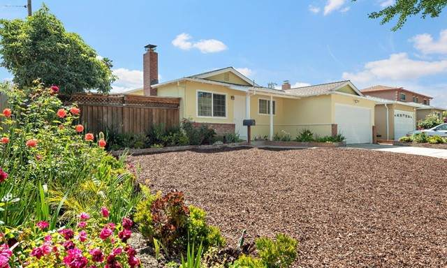 1579 Diel Drive, Milpitas, CA 95035 (#ML81844157) :: Necol Realty Group