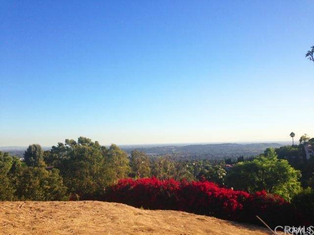 1501 Dorothea Road, La Habra Heights, CA 90631 (#AR21104696) :: The Marelly Group | Sentry Residential