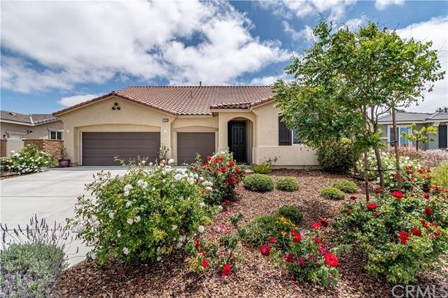 34620 Persian Lilac Street, Winchester, CA 92596 (#SW21104713) :: Steele Canyon Realty