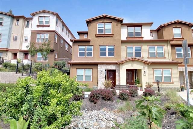 225 Ryan Terrace, San Ramon, CA 94583 (#ML81844214) :: Team Forss Realty Group