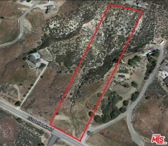 9815 Elizabeth Lake Road, Leona Valley, CA 93551 (MLS #21732754) :: Desert Area Homes For Sale