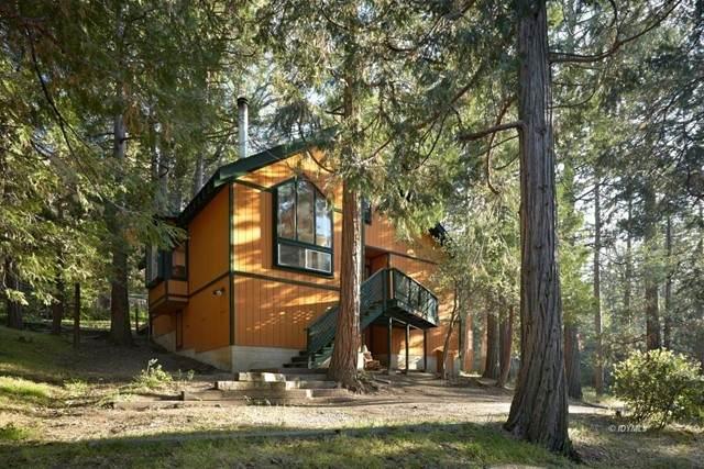 53015 Marian View Drive, Idyllwild, CA 92549 (MLS #219062167DA) :: CARLILE Realty & Lending