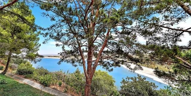 44 Vienna, Newport Beach, CA 92660 (#NP21097841) :: Blake Cory Home Selling Team