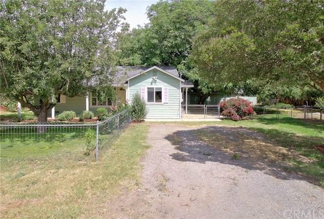 9260 Stanford Lane, Durham, CA 95938 (#SN21105446) :: The Laffins Real Estate Team