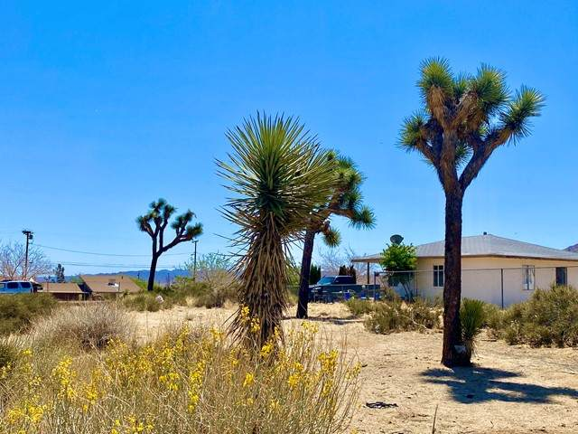 201 Ronald Drive, Yucca Valley, CA 92284 (#219062220PS) :: Millman Team