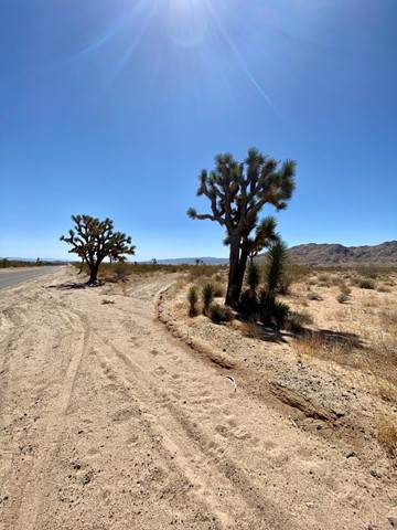 41 Acres On Aberdeen Drive, Joshua Tree, CA 92252 (#219062225DA) :: Millman Team