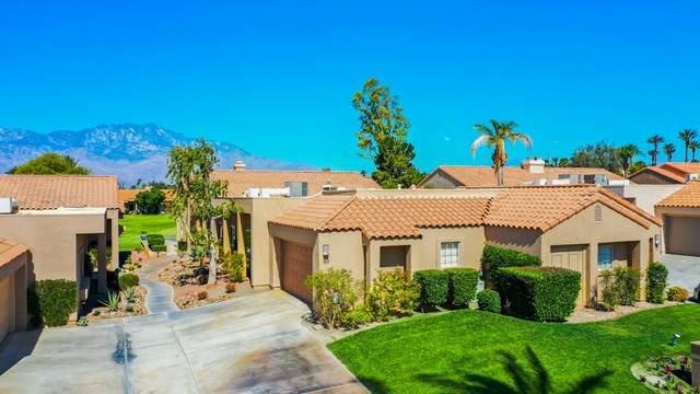 89 Augusta Drive, Rancho Mirage, CA 92270 (#219062260DA) :: Zember Realty Group