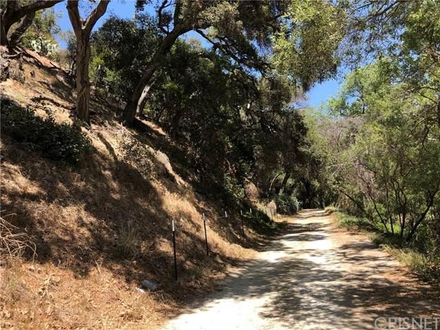 555 N Creek Trail, Topanga, CA 90290 (#SR21107480) :: The Marelly Group | Sentry Residential