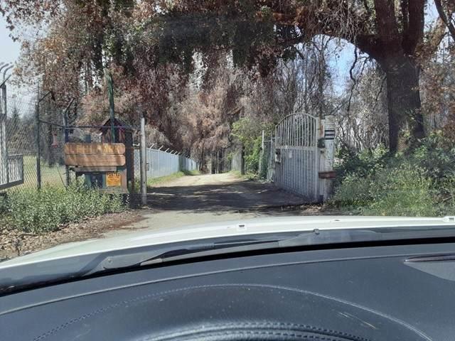 2080 Bertoli Drive - Photo 1