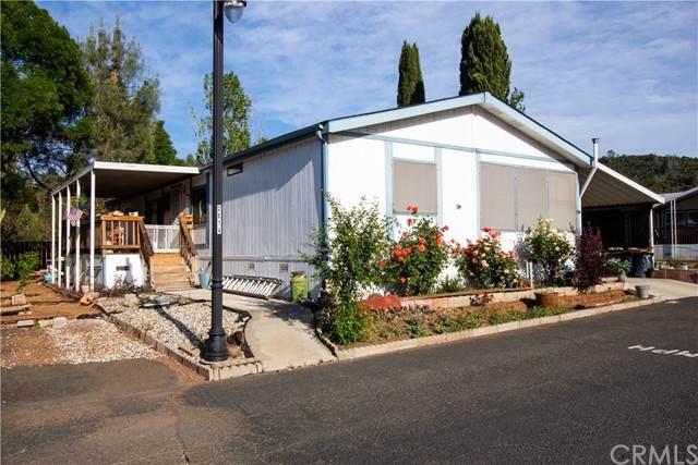 400 Sulphur Bank #159, Clearlake Oaks, CA 95423 (#LC21105313) :: Powerhouse Real Estate