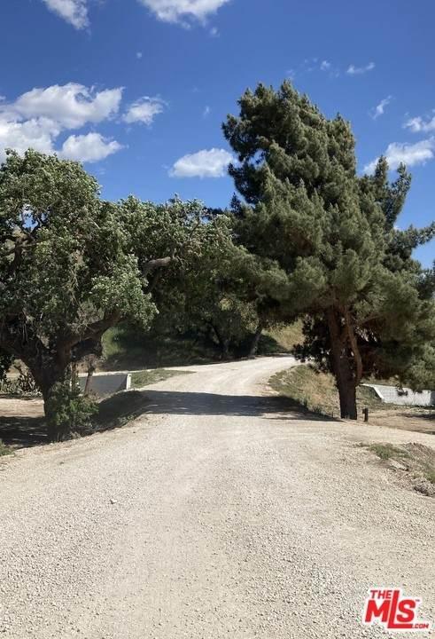4650 Estelle Vineyard Drive, Santa Ynez, CA 93460 (#21734072) :: RE/MAX Empire Properties