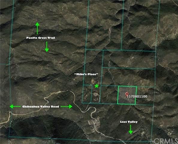 31472 Chihuahua Valley Road - Photo 1