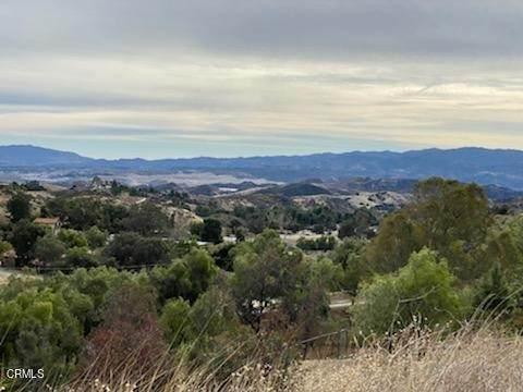 30910 Desert Shadow Road, Castaic, CA 91384 (#V1-6006) :: Team Forss Realty Group